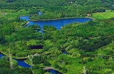 """西安20个村获评""""国家森林乡村"""" 陕共有300个村进围"""
