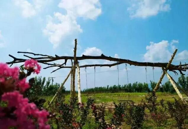 西峡县新远方农场:体验农旅生活、品尝农场美食