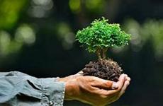 西安市资源规划系统推进迎全运环境卫生整治