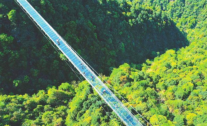 """安远县三百山景区的""""天空之桥""""(图)"""