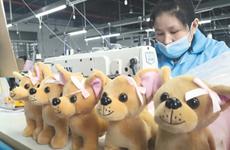 """毛绒小玩具扶贫大产业 安康1万只""""狗狗""""去德国"""