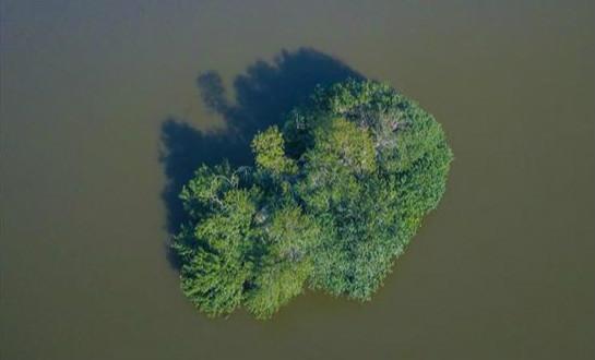 """一座东湖小岛的三季"""" width="""