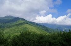 """陕西省周至等6个国家级自然保护区保护成效评估为""""优"""""""