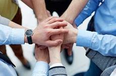 抱团发展盘活资金助力乡村振兴 周至首个集体经济联合社成立