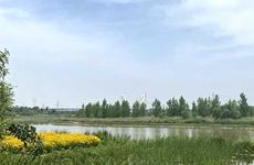 西安市举行全域治水碧水兴城重点项目现场观摩 王浩参加