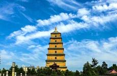 陕西省将征集2020年5G文化旅游示范应用场景项目