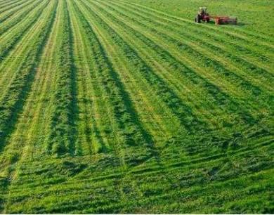 云南全面完成耕地土壤环境质量类别划分工作