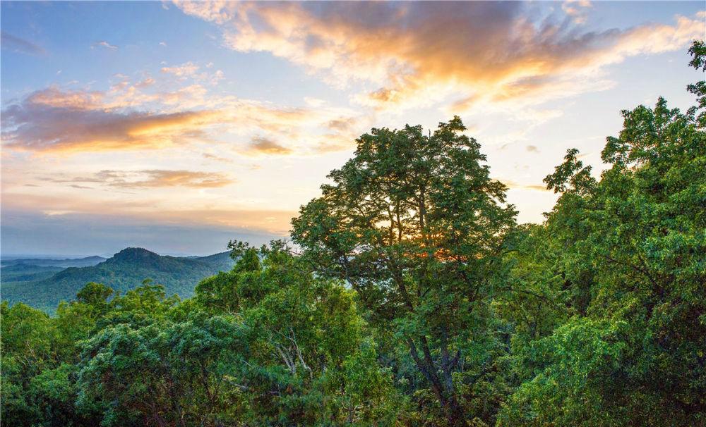 """黑龙江国有森工林区改革激发""""生态动能"""""""