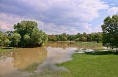 陜西略陽縣城啟動一級洪水應急響應:部分房屋1樓將被水淹