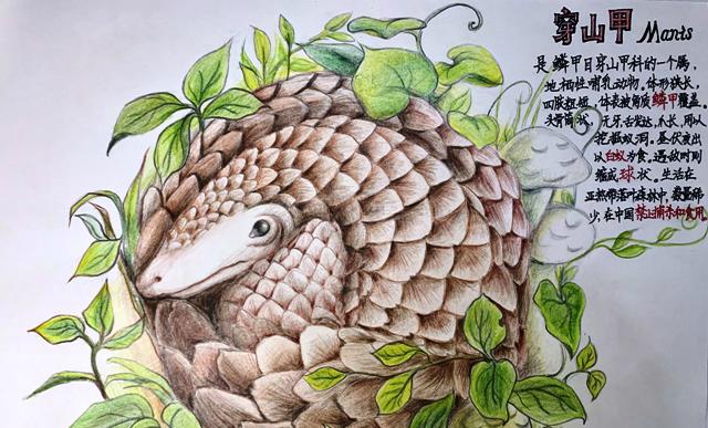 """大连千余名孩子用画笔描绘自然与科学"""" width="""