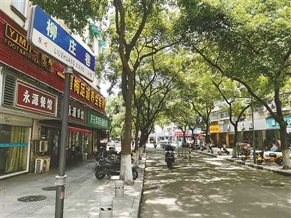 柳庄巷(图片由作者提供)