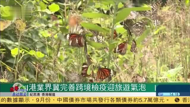 香港放宽本地游,50多间旅社登记开办