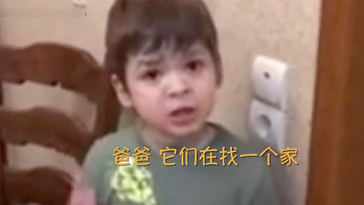 """家人杀了只老鼠 6岁男孩正义感爆棚为鼠""""申冤"""""""