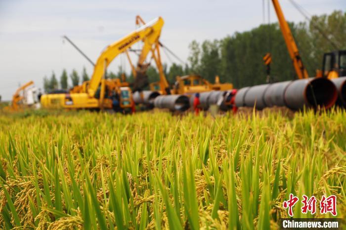 侯文祥表示,除了工期紧张外,管道建设