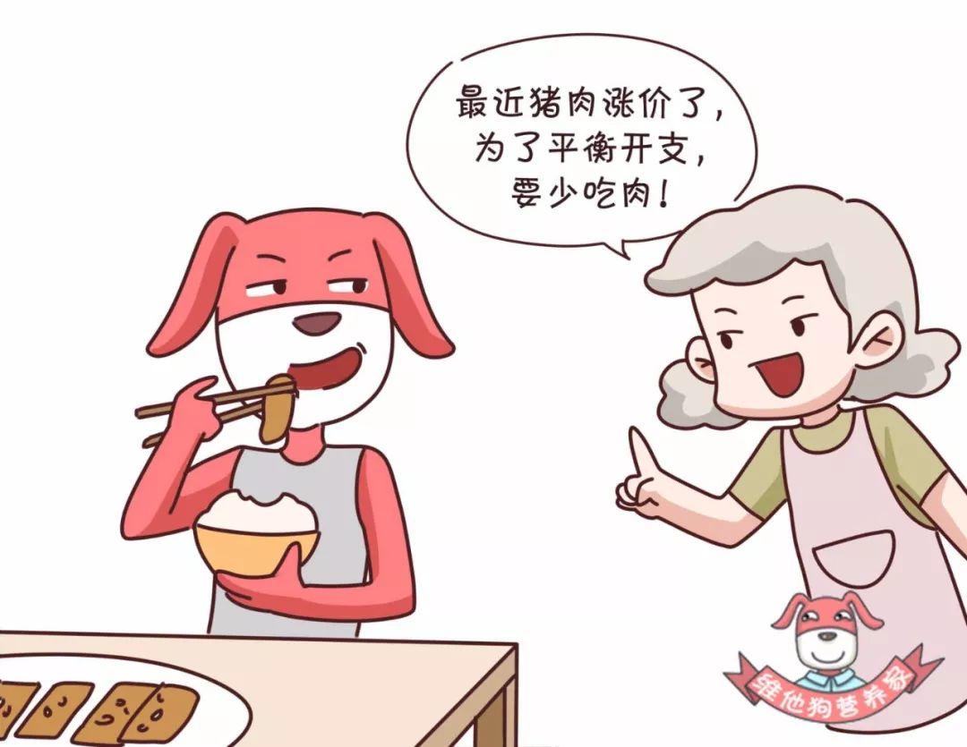 虽然狗狗是无所谓,但是这可苦了家里无肉不欢的男士,不能大块吃肉