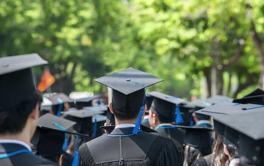 专赚学生钱,利润超茅台:毕业论文背后的灰色产业