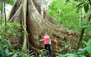 亚马逊最原始