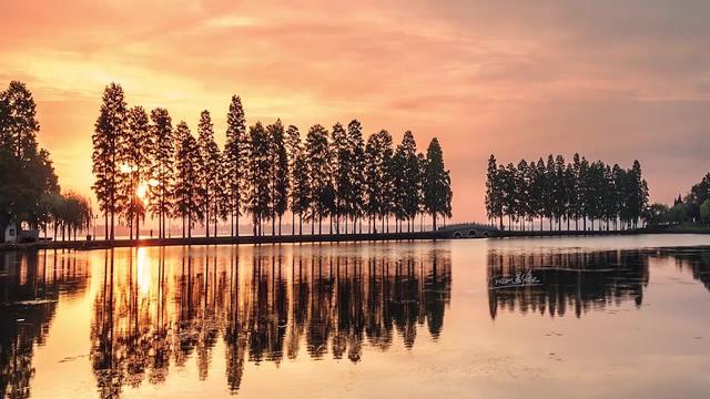 武汉美丽的城市,风景优美!东湖梨园风光无限美!