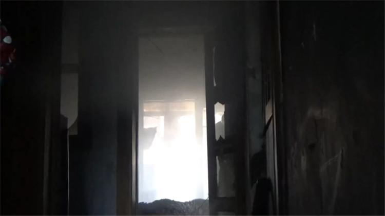 屋主喂猫一开门才知家中失火 多只宠物被烧死