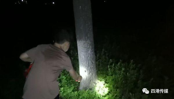<b>8岁的他不想让姐姐死去,于是深夜时在树林里点亮灯光</b>