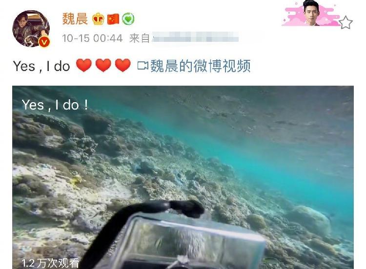 魏晨水下求婚成功!魏晨女友系其川音大学同学于玮