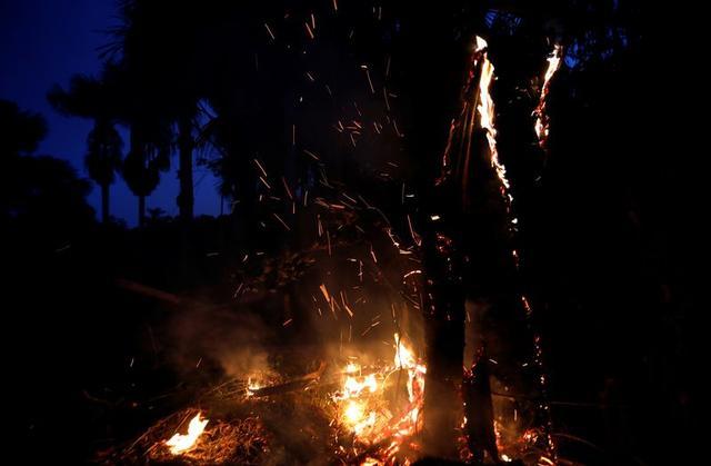 """燒了7年的亞馬孫""""無形之火"""",誰會是最后贏家"""