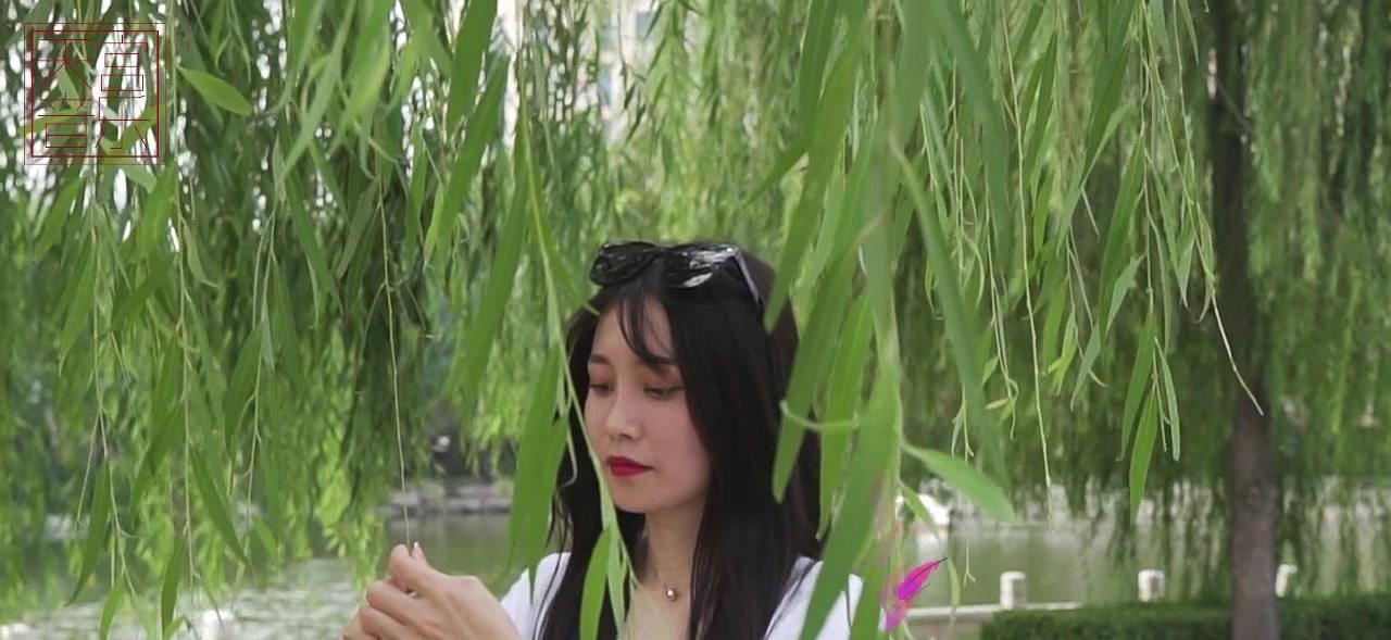 王二妮,阿宝一曲《小河淌水》好听醉了企业面试视频教学图片