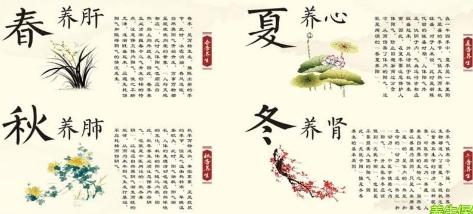 """推荐:弘扬""""四时养生""""文化,""""黄妙丹""""上市引起广泛关注"""