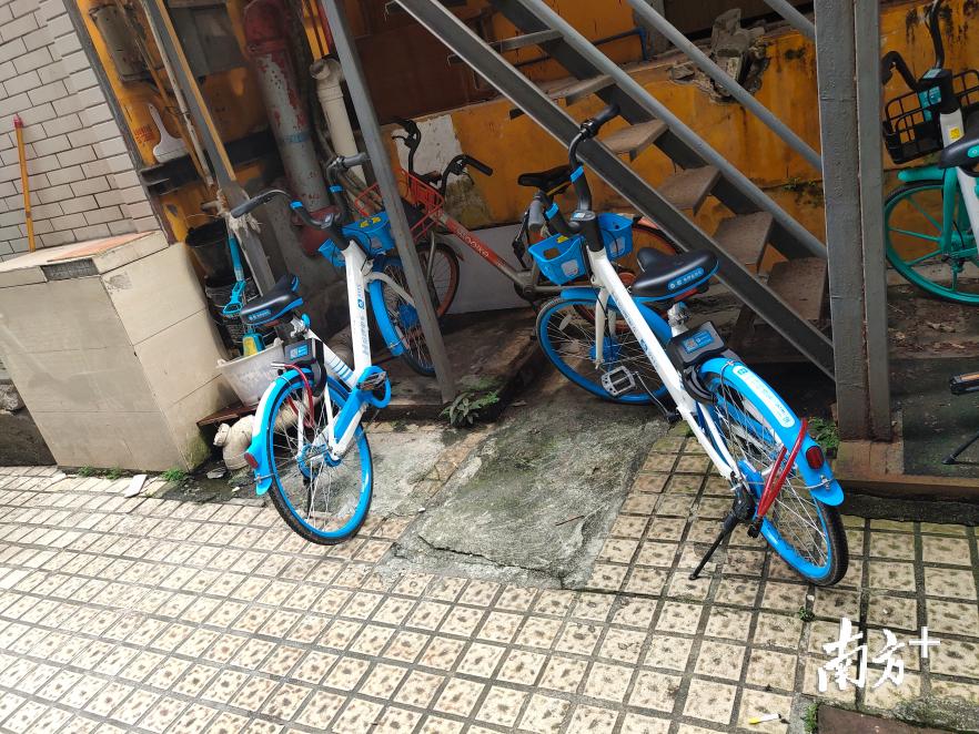 广州一女子因破坏、私占共享单车