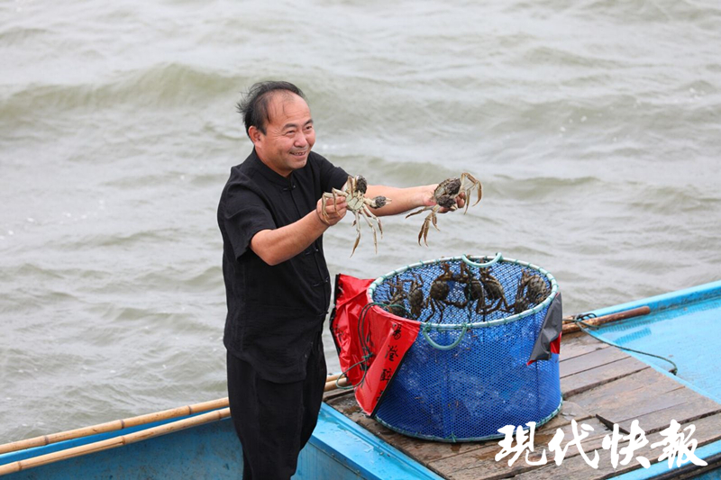 阳澄湖大闸蟹9月23日开捕,价格预计比去年涨10%