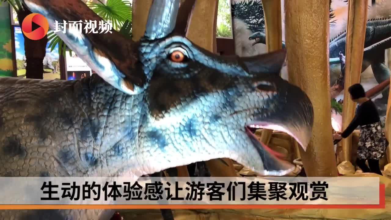 """小西博会现场 穿越时空与""""恐龙""""互动"""