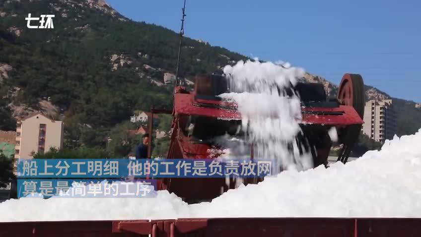 丰收|威海赤山渔港:六天捕捞一满仓