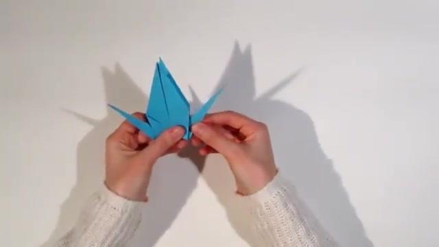 折纸王子教你折一只雄鹰!