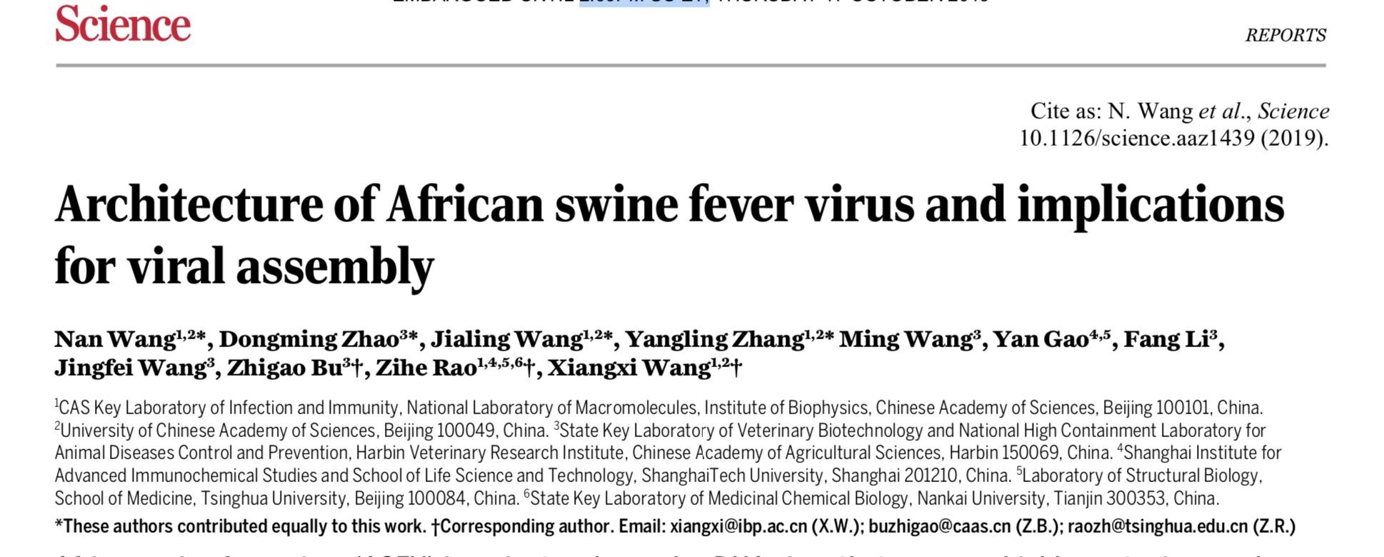 中国团队解析非洲猪瘟病毒精细三维结构,助力新型疫苗开发