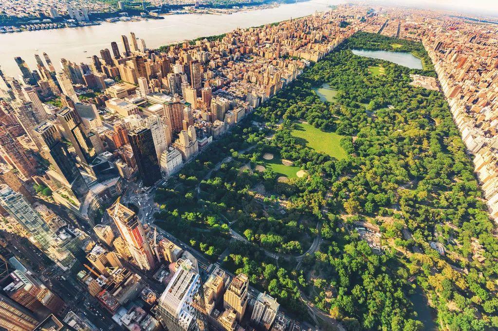 钢筋水泥森林规划好了,也能像大自然那样治愈我们的心灵 水泥森林
