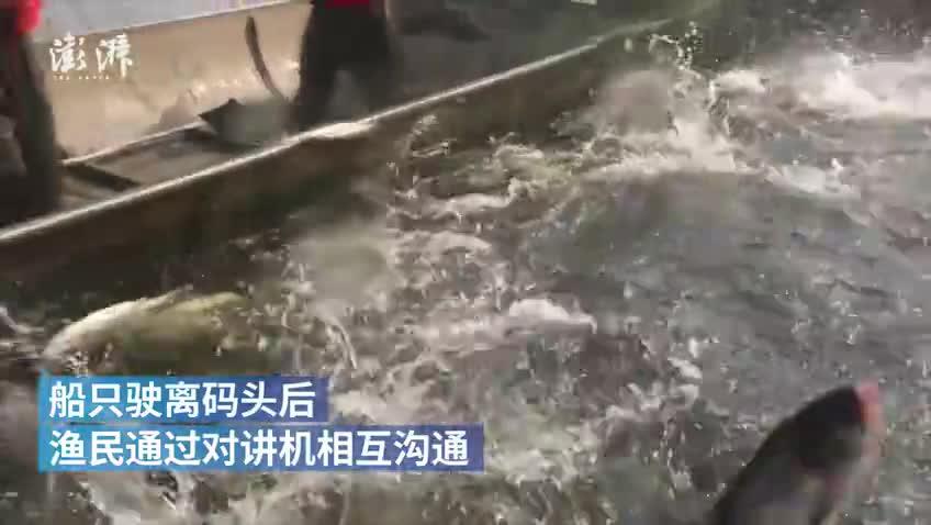 """开渔节渔民用渔船摆""""70""""为祖国献礼"""