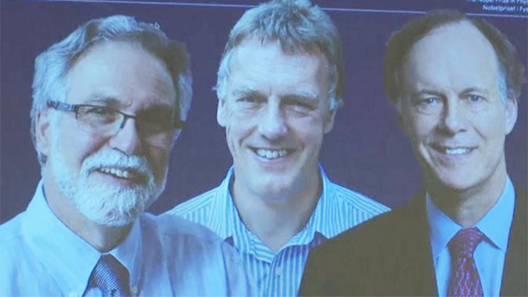 三位科学家获2019年诺贝尔生理学或医学奖