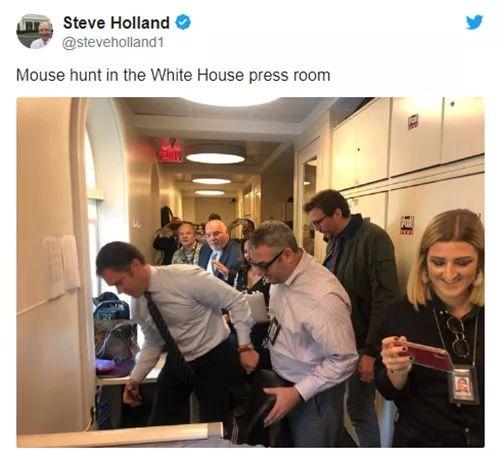 """美國白宮突發""""驚恐""""新聞:老鼠從天花板掉落在人身上"""