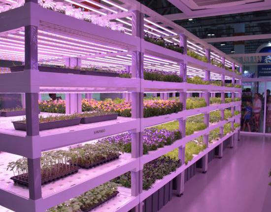 获得2019年红点产品设计奖的中科三安植物种植模组