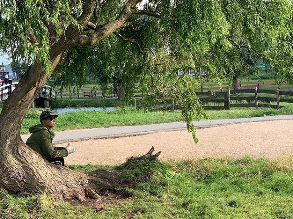 任达华陪妻女荷兰旅游伤势未康复独坐树下神态落寞
