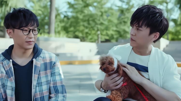 看到初恋情人遛大型犬,小伙带小狗去套近乎,结果让人哭笑不得