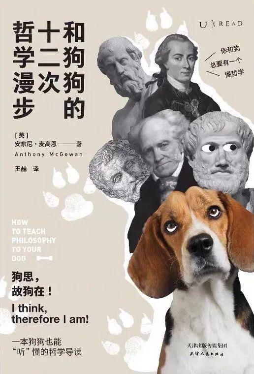 哲学和狗狗能扯上什么关系?