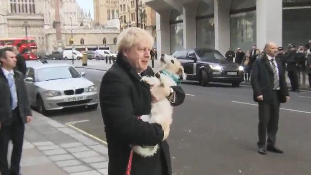 2019英国大选打响!首相约翰逊抱着狗去了投票站