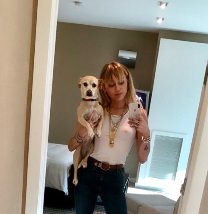 麦莉重回单身抱狗狗自拍与女友分手因为发展太快