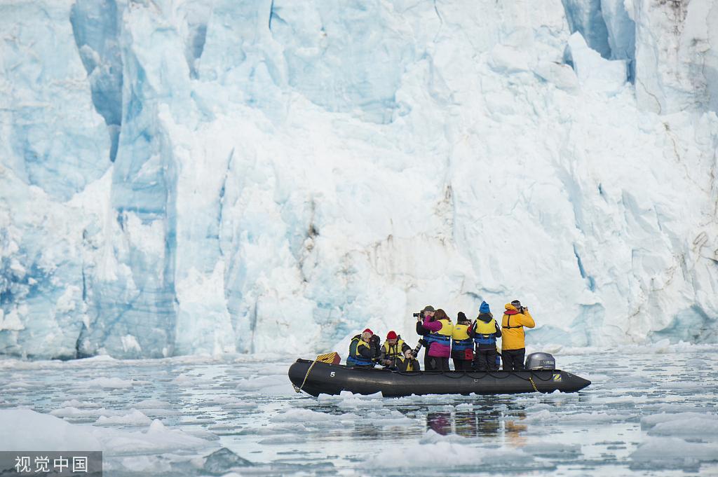 1895淘金国度_这里北极熊的数量超过人类,被誉为北极熊的国度.