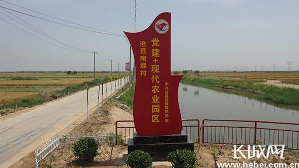 河北沧县:党建引领强村富民 助力乡村振兴