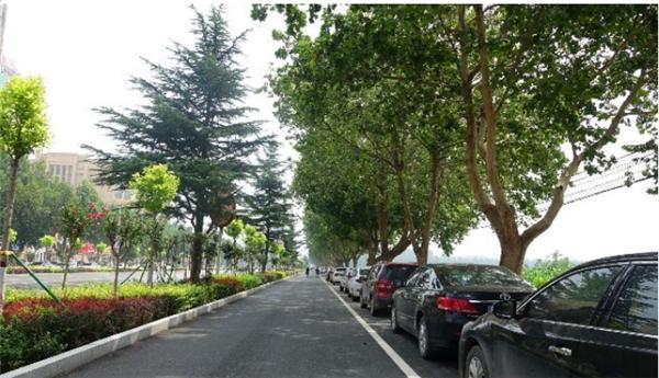 保定曲阳:大力实施城市道路提升