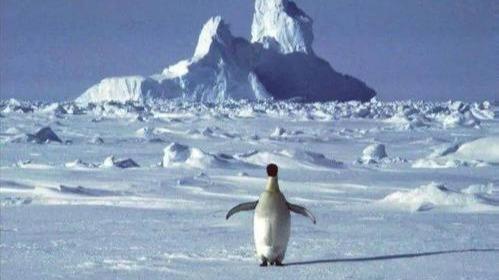 智利南极基地暴发疫情