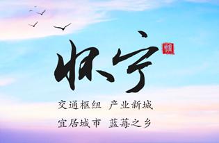 """县在说   在安徽这里,谈一场""""蓝莓之恋""""!"""