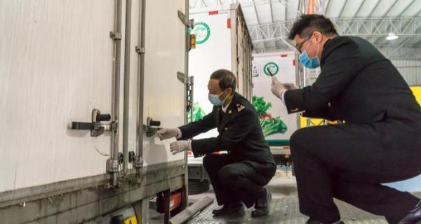 肇庆怀集供港蔬菜首次直通香港 每天可供应20多吨